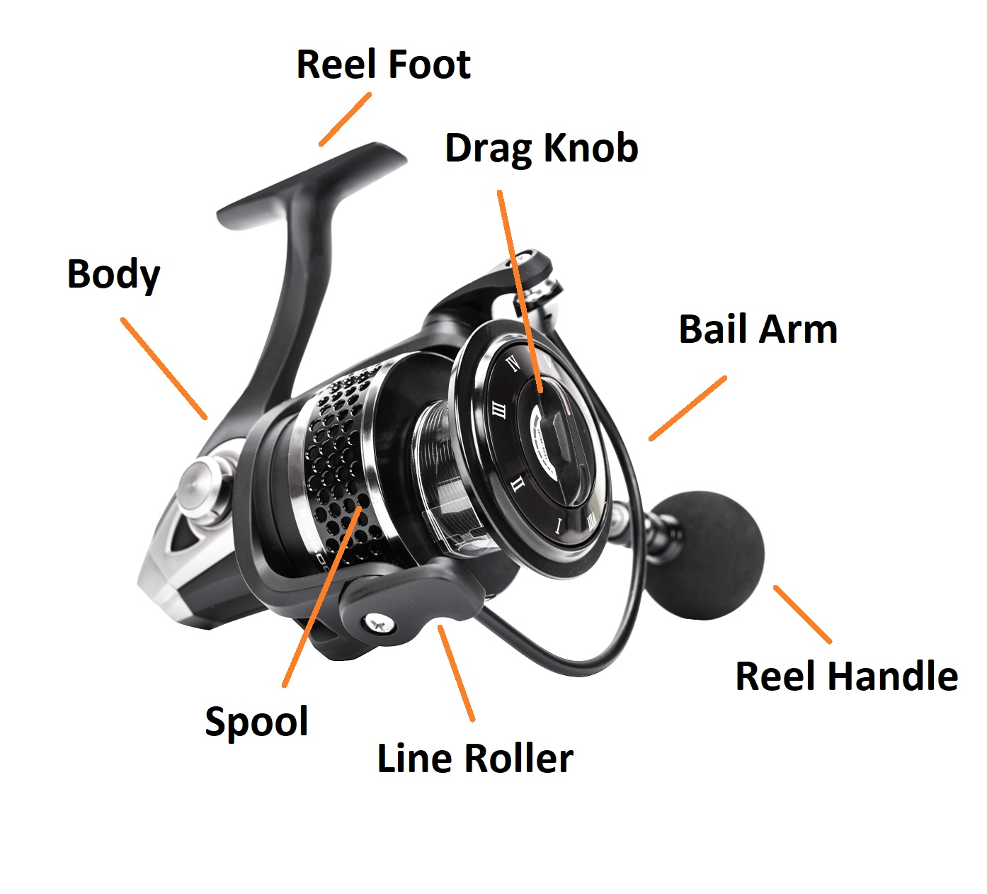 Different parts and mechanics of a spinning reel.