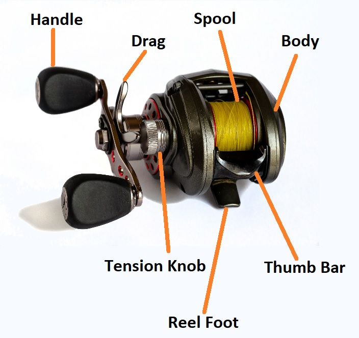 Baitcasting reel parts.