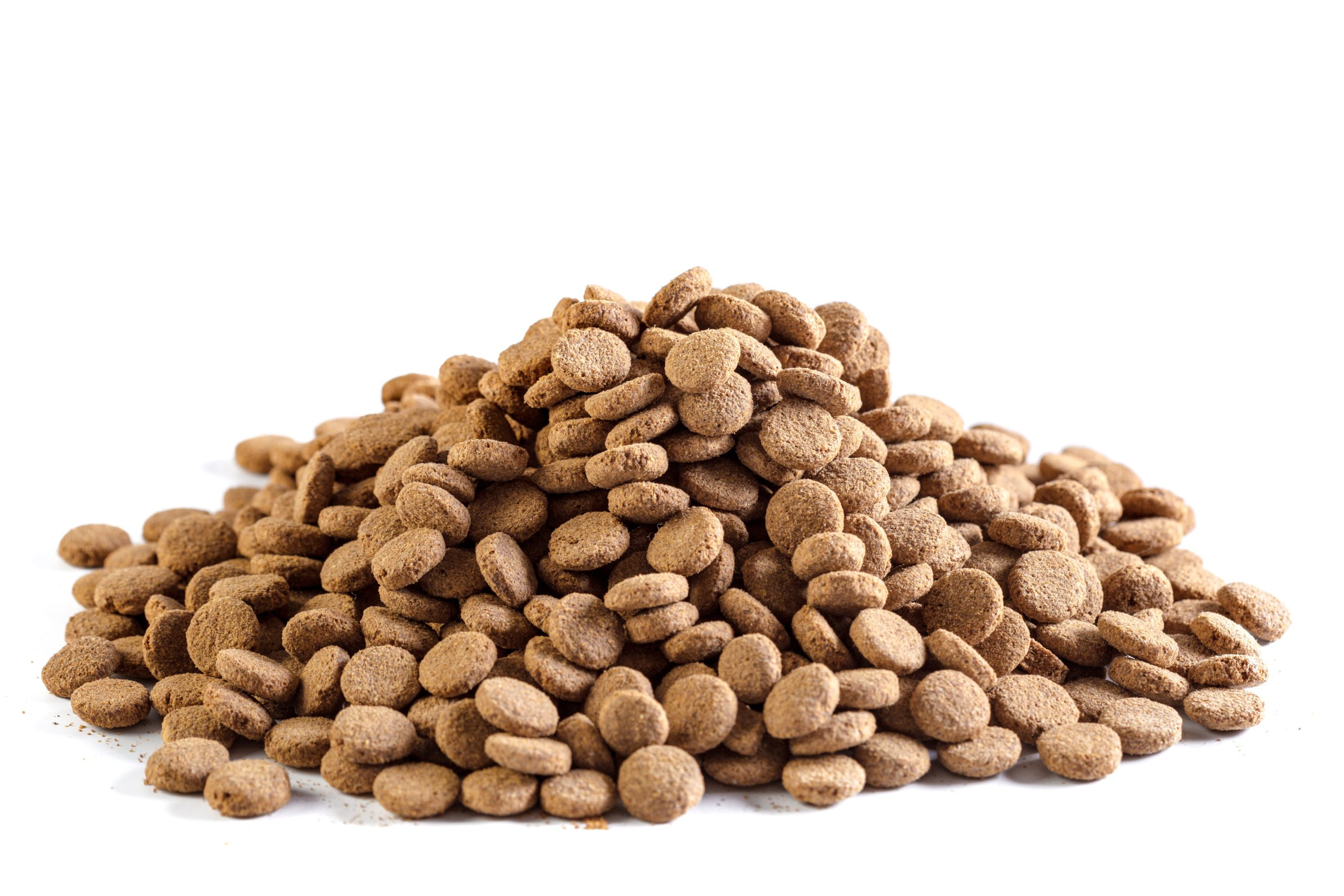 Dry dog food isolated on a white background.