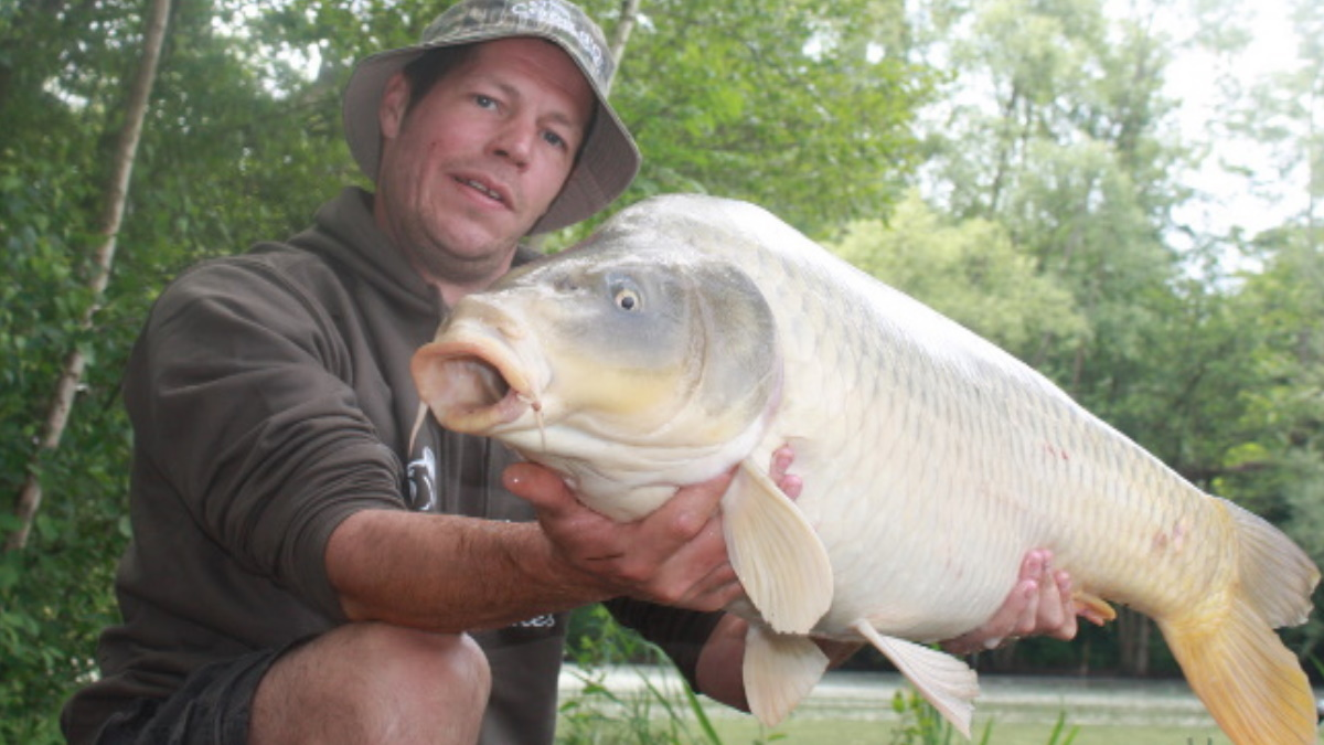 A carp angler holding a common carp on grass.