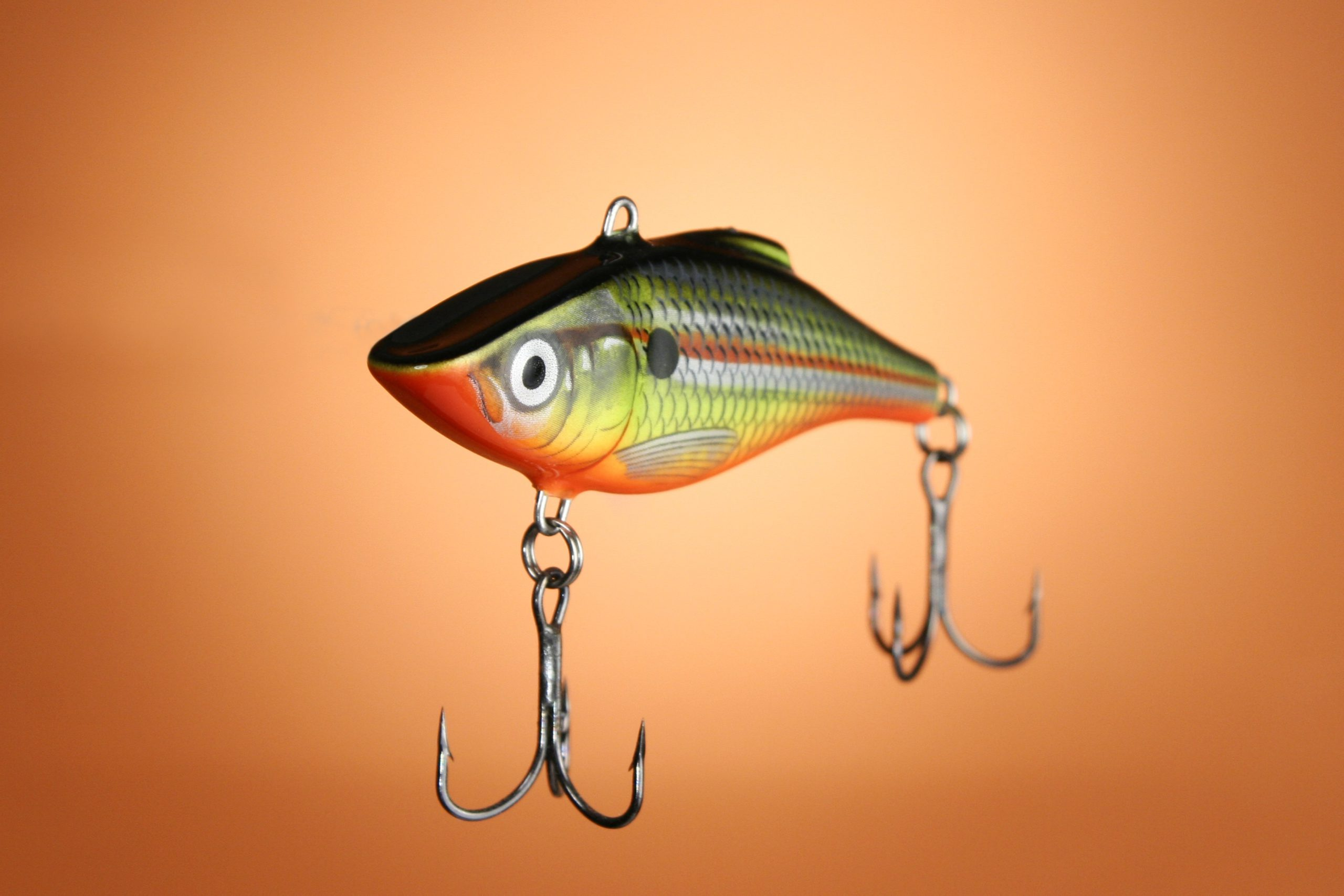 A lipless crankbait in a shad pattern on an orange background.