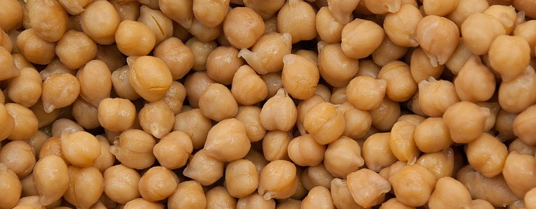 Chickpeas or garbanzo beans with juice from a can.