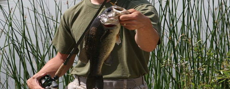 Angler holding a largemouth bass fish.