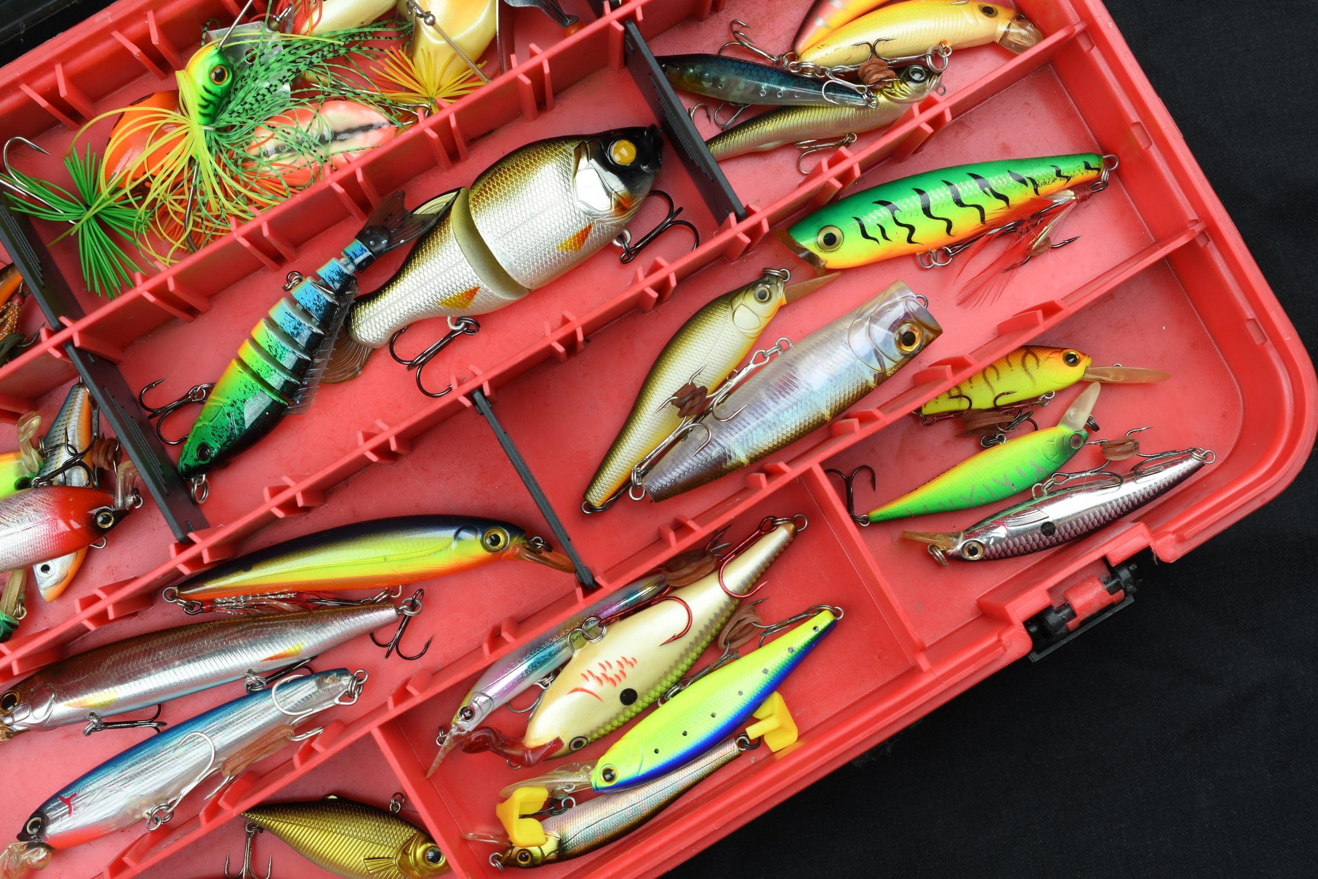 Fishing lures inside a tackle box with cranks and jerkbaits.
