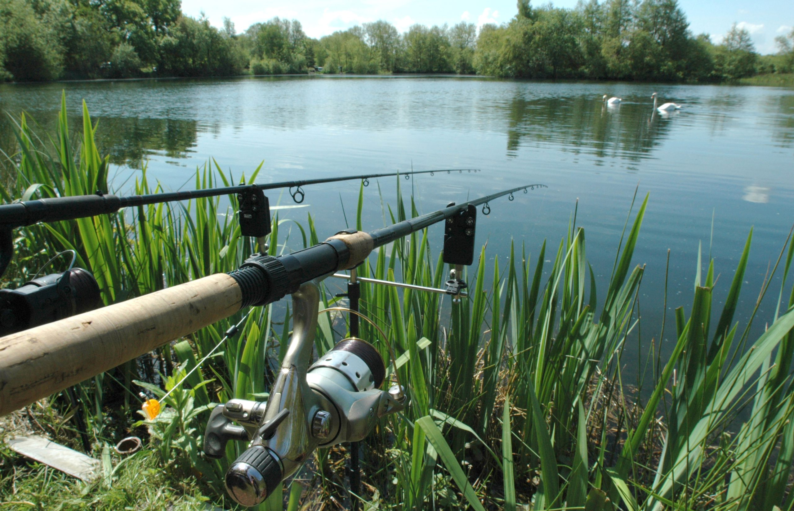 Spinning rods in rod holders with lines in the water.